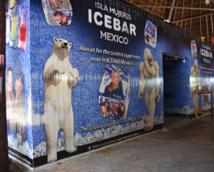 The Ice Bar is one of those experiences that is worth it if you are in a group.
